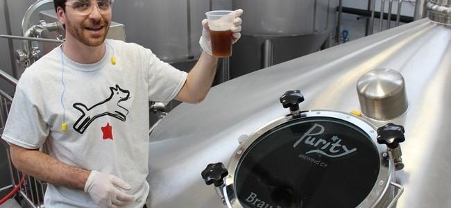 Purity Brewery Aaron Taubman